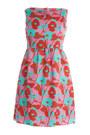 Roksanda-ilincic-dress