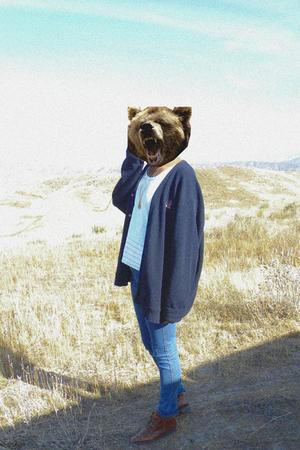 IZOD sweater - shirt - shoes