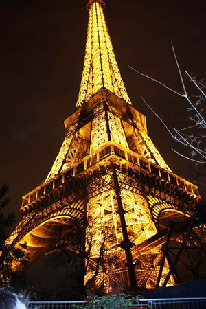 eiffel tower intimate