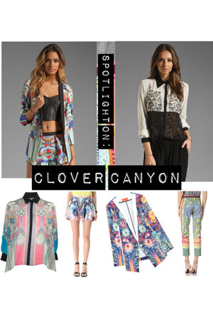 silk vibrant Clover Canyon top
