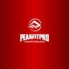 PeakFitPro