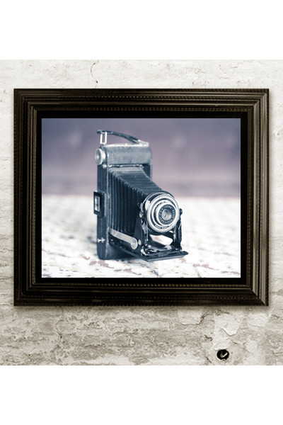 vintage camera home decor