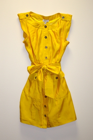 gold Bebe dress