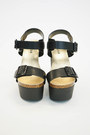 Black Soda Aralia Wedges