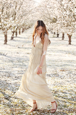 beige maxi dress Alyssa Nicole dress