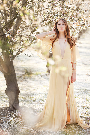 light yellow gown Alyssa Nicole dress