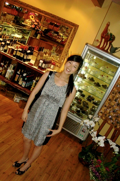 purse - dress - shoes