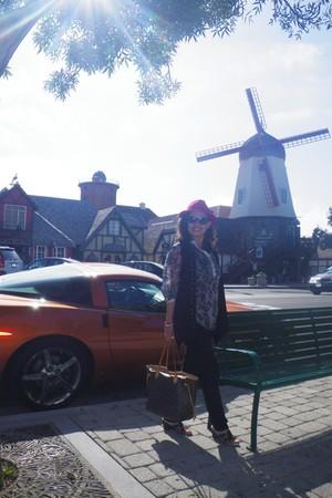 ruby red red fedora hat - dark brown Louis Vuitton bag - dark brown GH Bass & Co