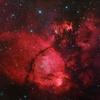 redcapricorn96
