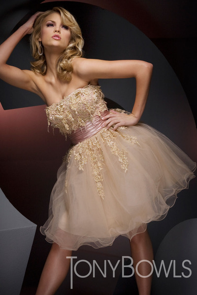 nude tulle skirt tony bowls dress